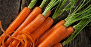 10-alimentos-que-ajudam-seu-bronzeado