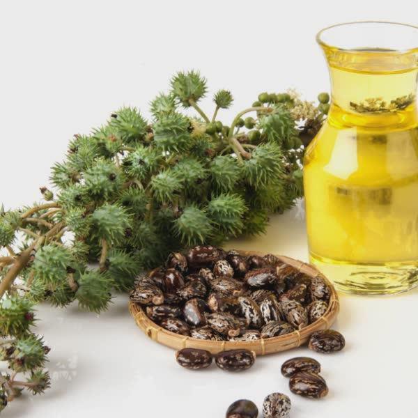 conheca-alguns-beneficios-do-oleo-de-ricino-1