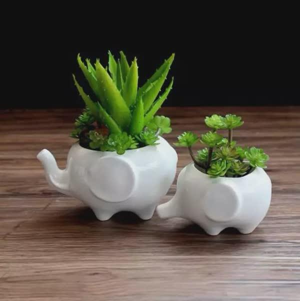 top-vasos-de-flores-diferentes-27