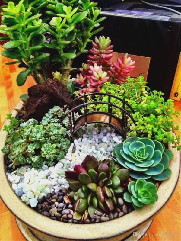 17-inspiracoes-de-mini-jardins-1