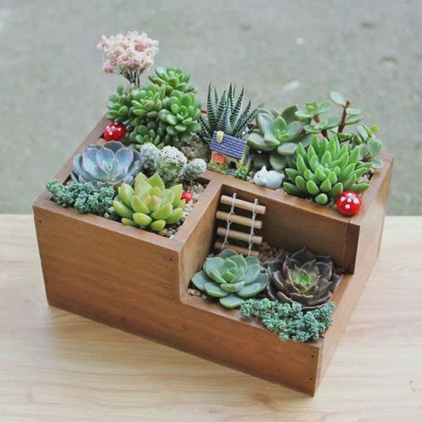 17-inspiracoes-de-mini-jardins-5