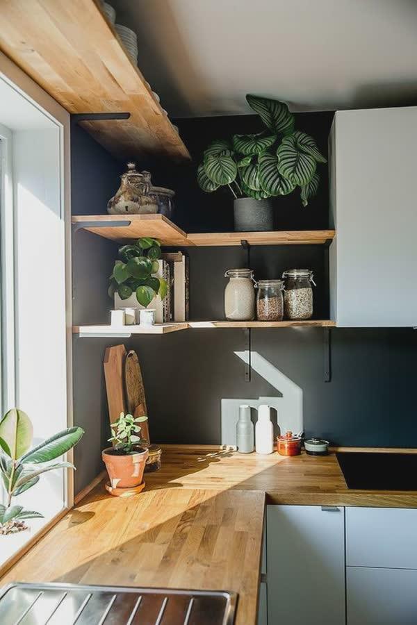 top-decoracoes-com-plantas-10