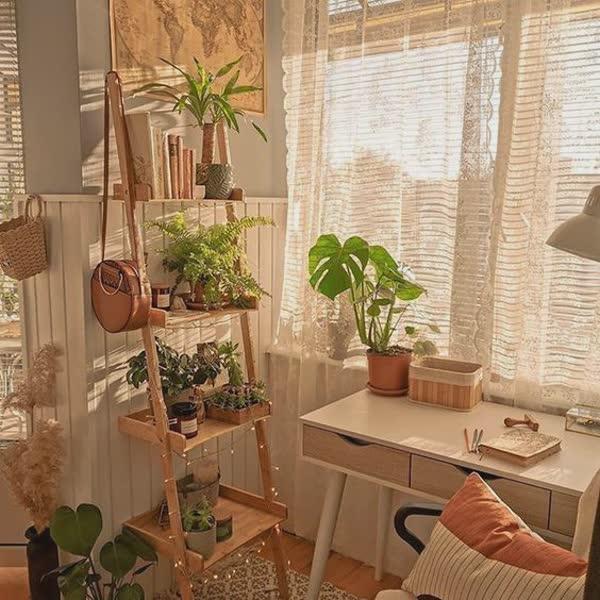 top-decoracoes-com-plantas-11