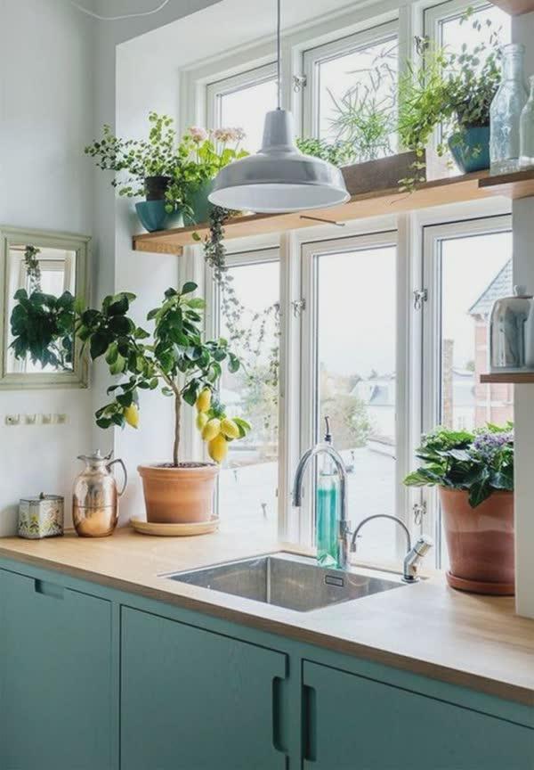 top-decoracoes-com-plantas-16