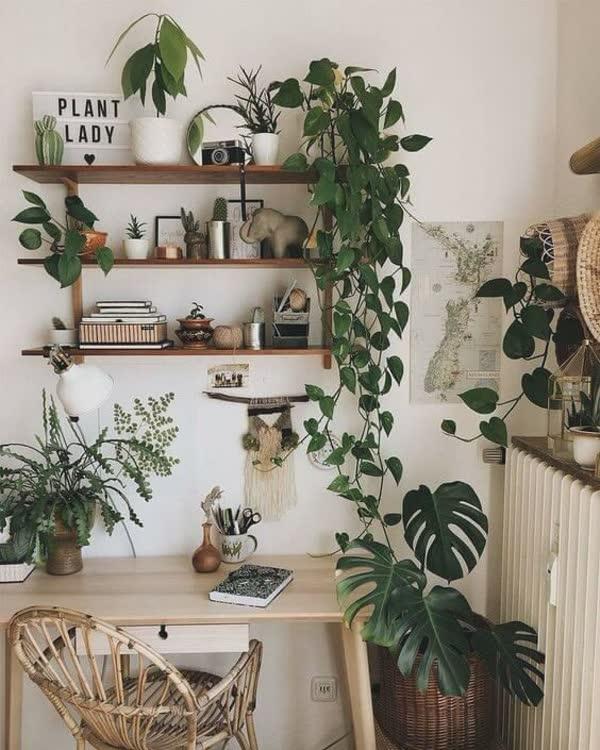 top-decoracoes-com-plantas-18