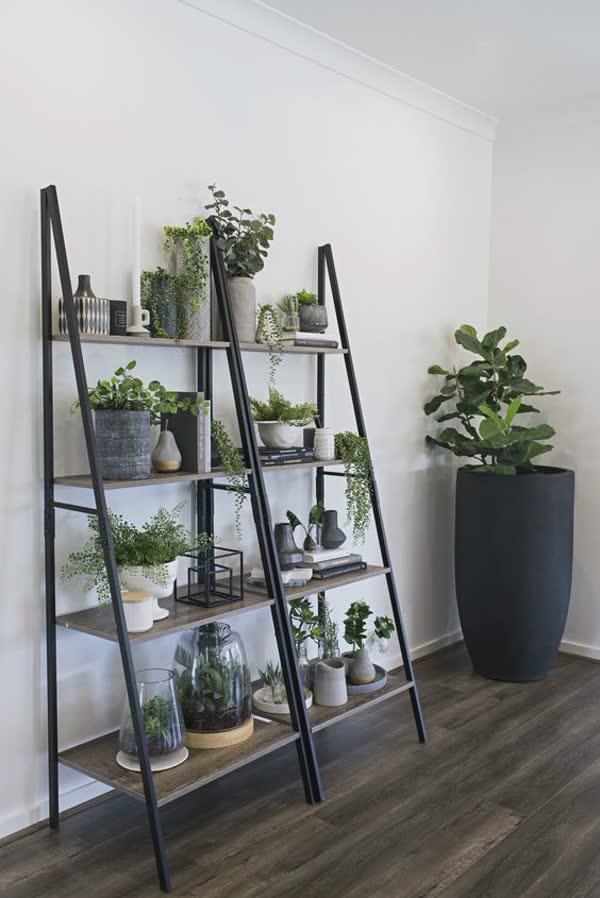 top-decoracoes-com-plantas-8
